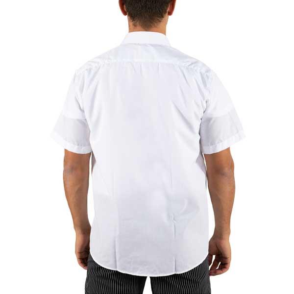 Camisas de manga curta com colarinho sem botões e bolso no peito do lado esquerdo
